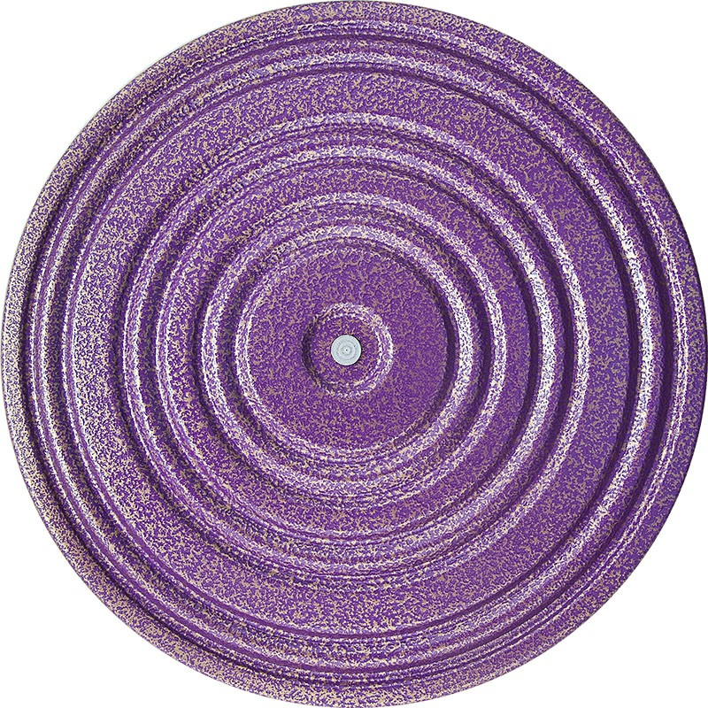 Диск здоровья металл, 28 см, фиолетов/зелен, MR-D-08