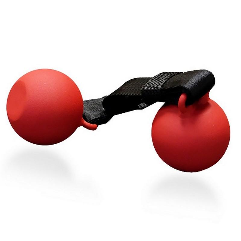 Рукоятка для подтягивания парная в виде ядра Body Solid SR-CB