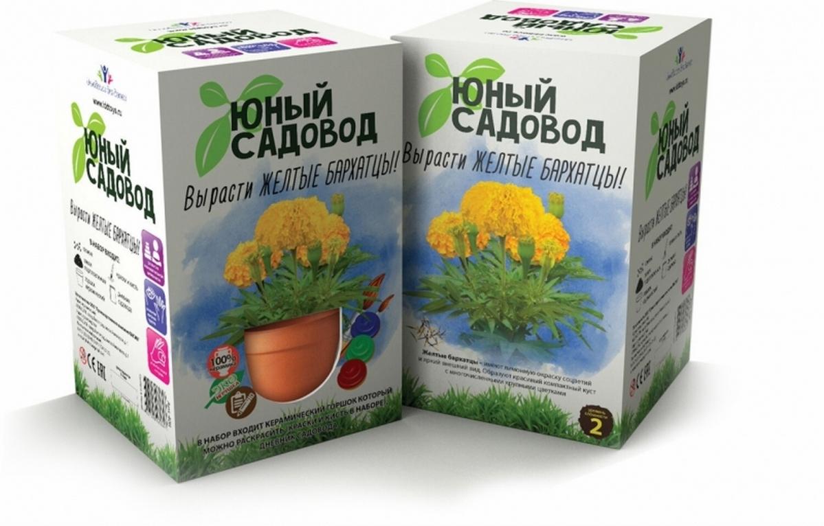 Купить Юный садовод. Вырасти желтые бархатцы Нескучные игры, NoBrand, Настольные игры