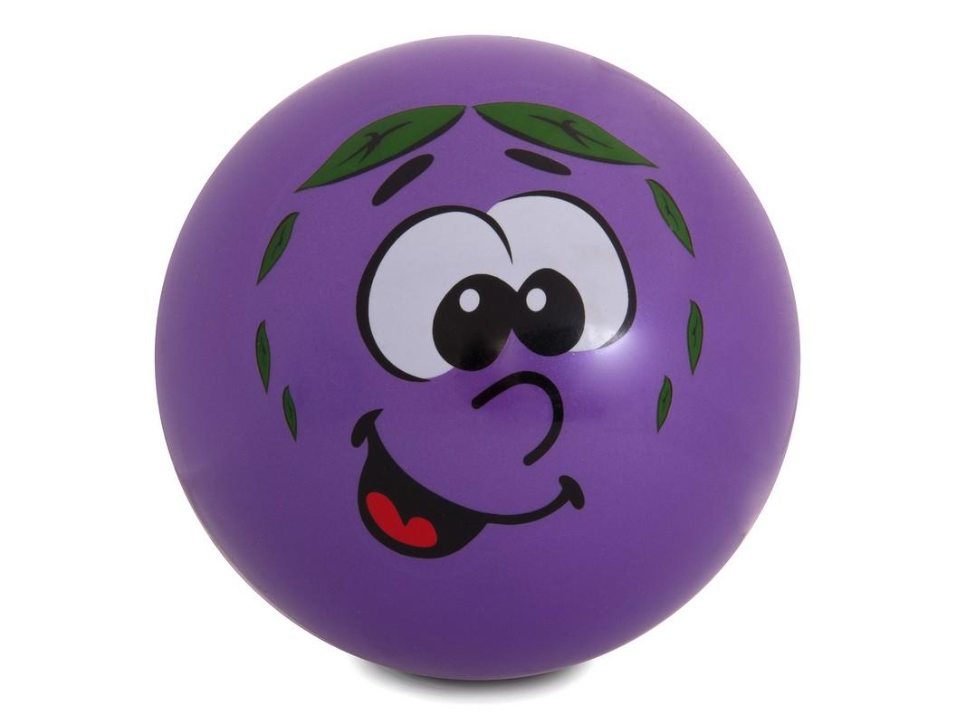 Купить Мяч Larsen Слива GSS-1,