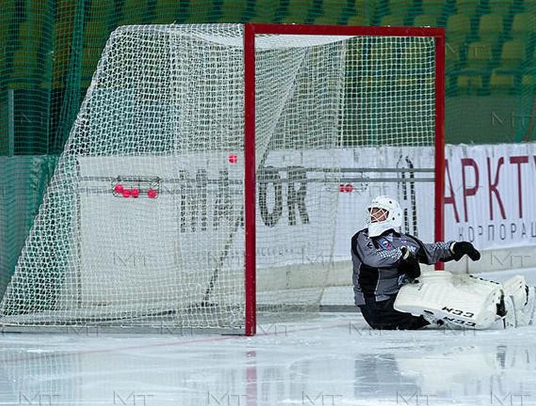 Сетка для хоккея с мячом ФСИ 4135-01, нить 3 мм (2х3,5м) 2шт.,  - купить со скидкой