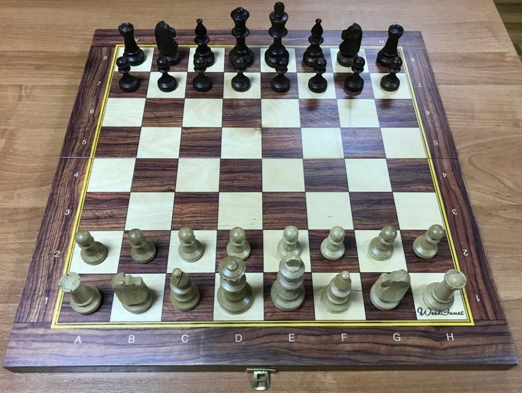Купить Шахматы Стаунтон №5 фигуры c утяжелителем в комплекте со складной деревянной доской 49 см ТШ 12, NoBrand