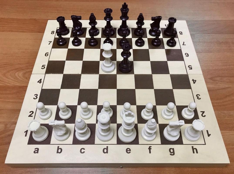 Купить Шахматы пластиковые N7 с утяжелителем деревянной складной доской 43 см ТШ 33, NoBrand