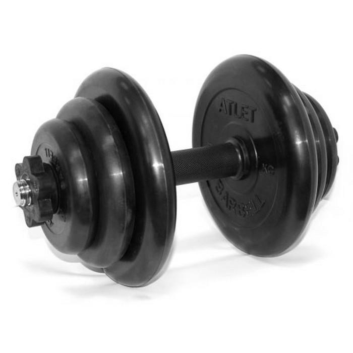 Купить Гантель разборная MB Barbell 19 кг MB-FdbM-At19,