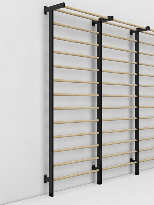 Купить Шведская стенка Glav металл/береза, размер 3000х800 мм 04.201.1-3000,