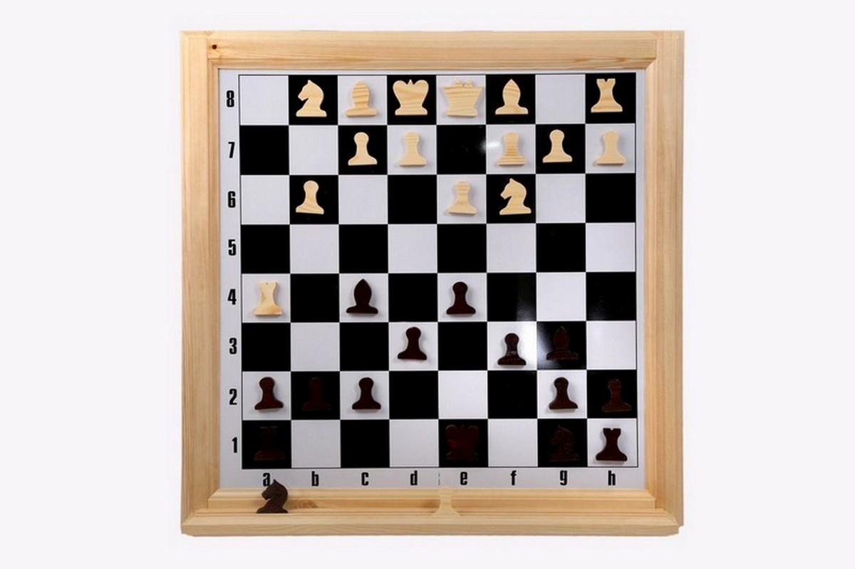 Шахматы настенные демонстрационные Н-2