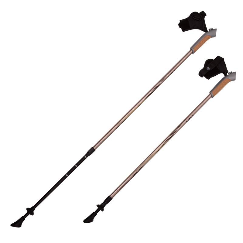 Купить Палки для скандинавской ходьбы RGX 2-секционные 85-135 см NWS-03А Золотой,