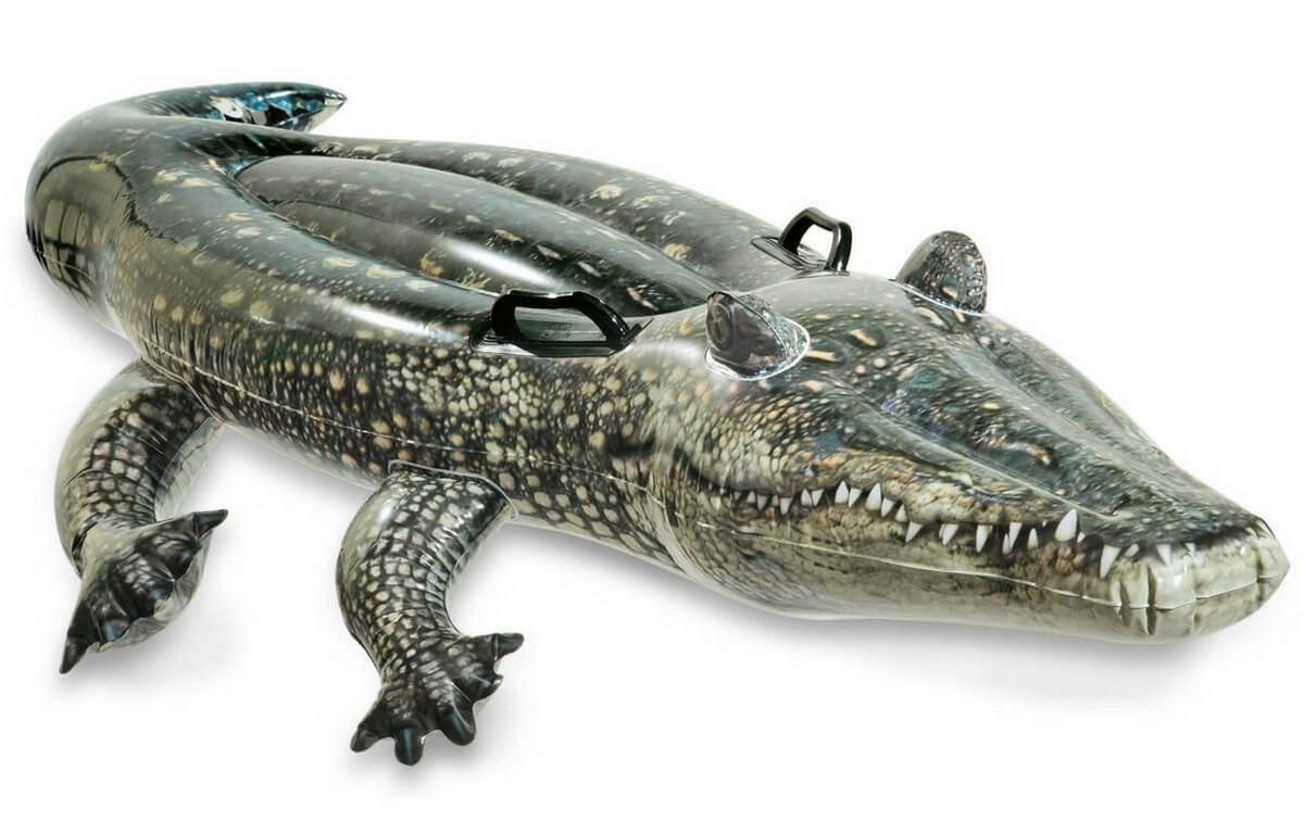Купить Игрушка- наездник Intex Аллигатор 170х86 см 57551,