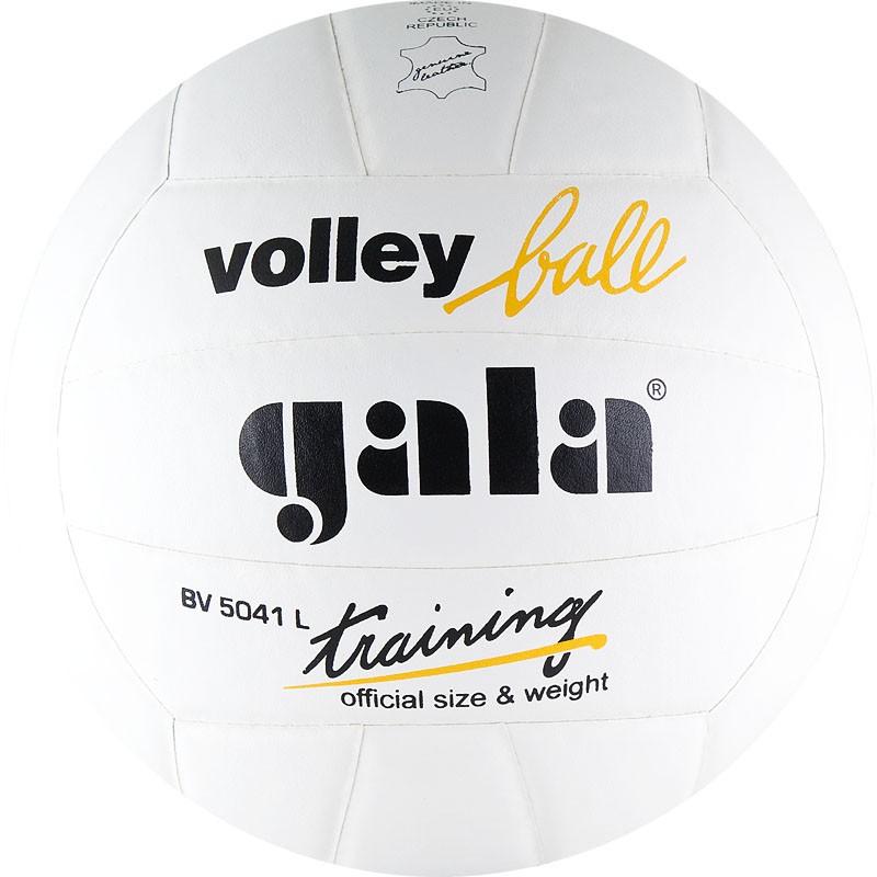 Мяч волейбольный Gala Training BV5041L р.5 мяч волейбольный gala school 10