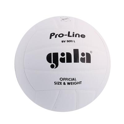 Мяч волейбольный матчевый Gala Pro-Line Competition BV5011L р.5 волейбольный мяч pro line gala bv5121s