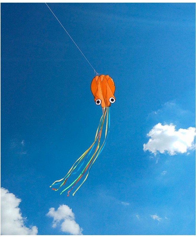 Купить Воздушный змей Bradex Осьминог DE 0440 оранжевый,