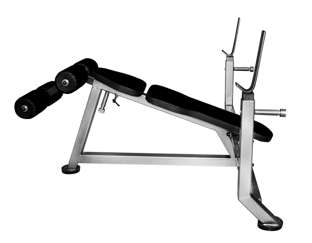Купить Скамья с обратным наклоном ProfiGym СК-0080-H (Classic),