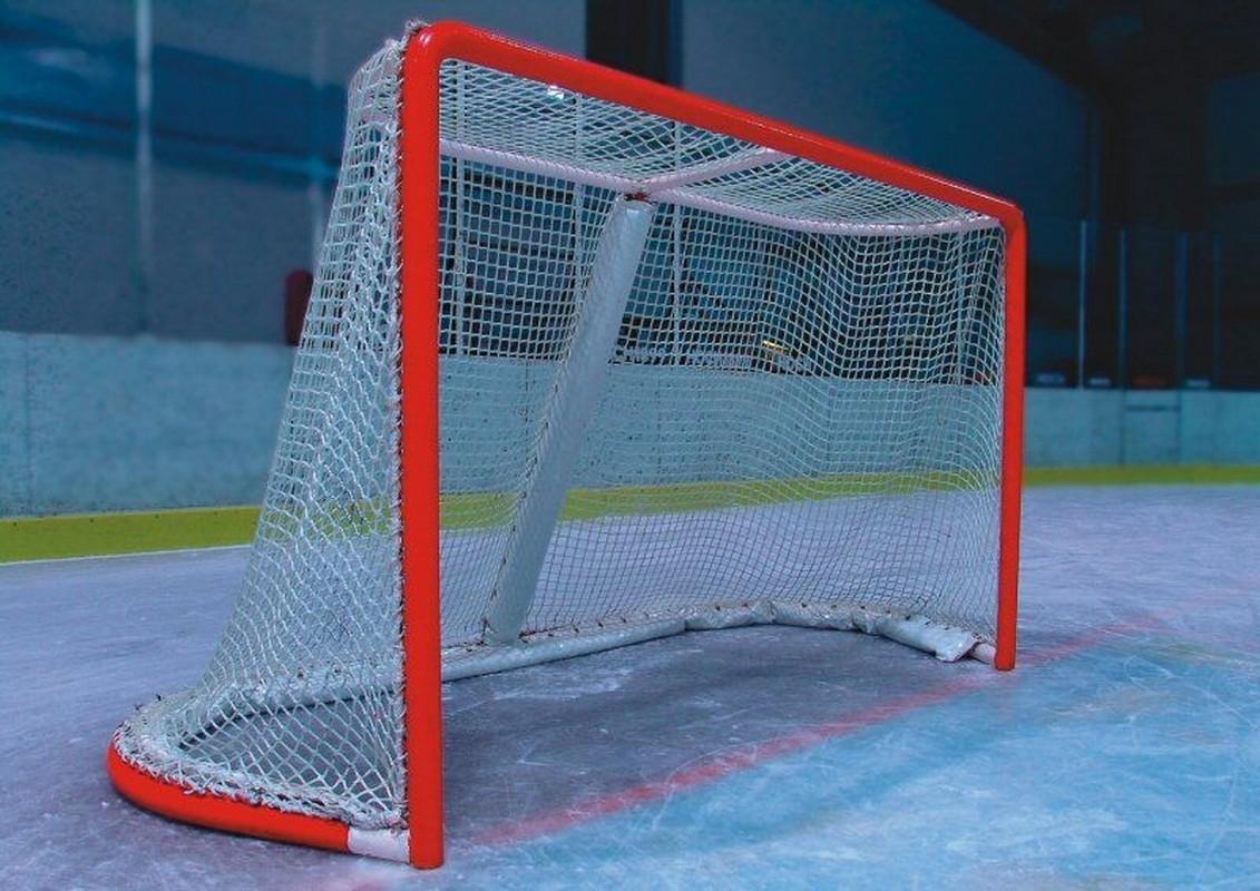 Сетка хоккейная любительская FS№X2.0 яч. 40 мм., шир. 1.85 м, высота 1.25 м, глуб. по верху 0.6 м, глубина по низу 1.2 м белый
