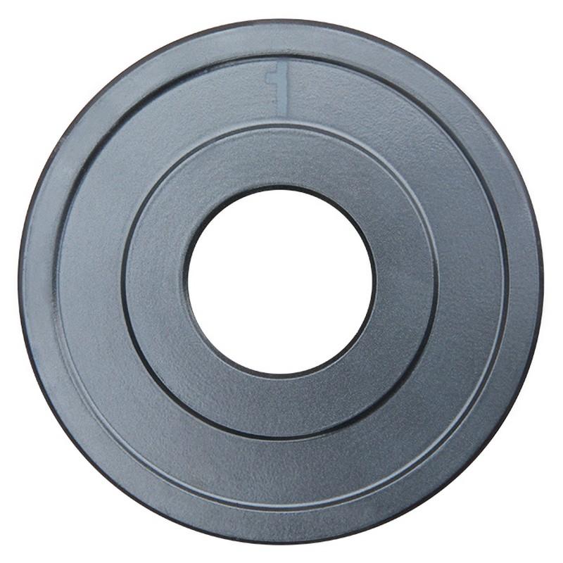 Диск хромированный ProfiGym d31 мм 1,0 кг ДТХ - 1/31