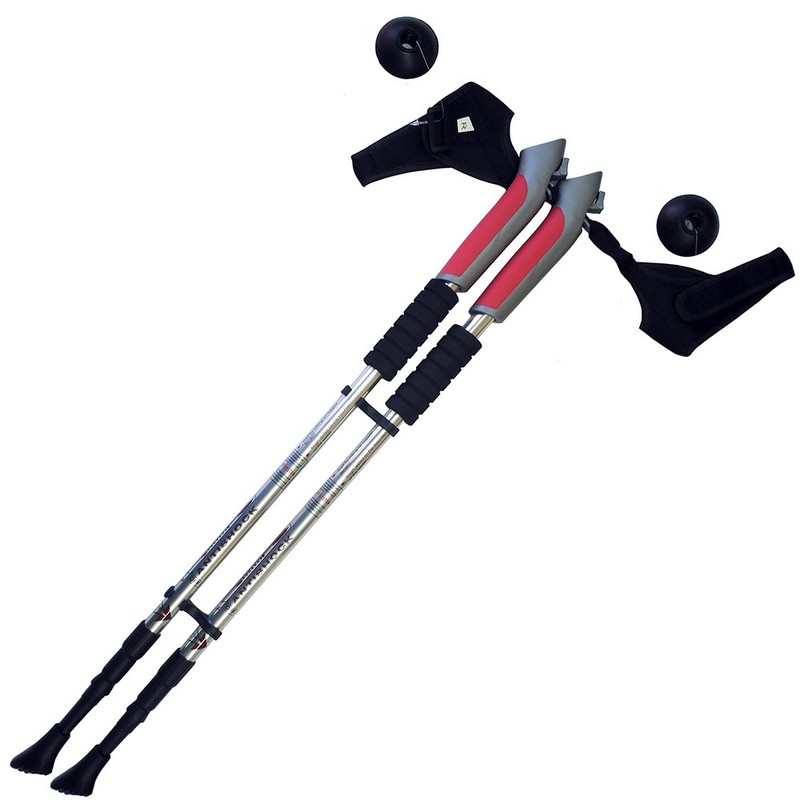Купить Палки для скандинавской ходьбы телескопическая, 3-х секционная F18449 серебро, NoBrand