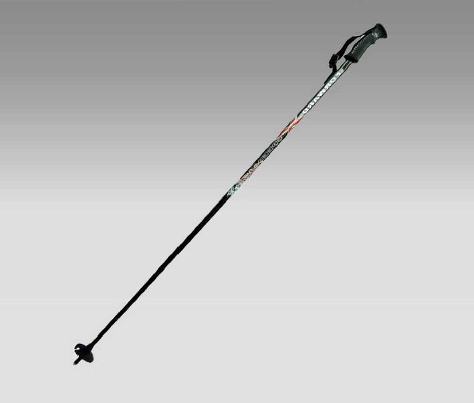 Палки для треккинга Forward 125 см
