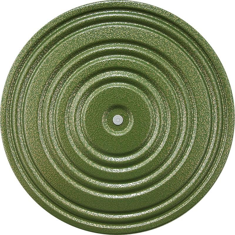 Купить Диск здоровья металл, 28 см, зеленый/черный, MR-D-03, NoBrand