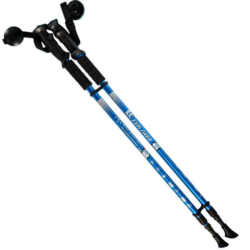 Купить Палки для скандинавской ходьбы 2-х секционные с чехлом (синие) R18141-PRO, NoBrand
