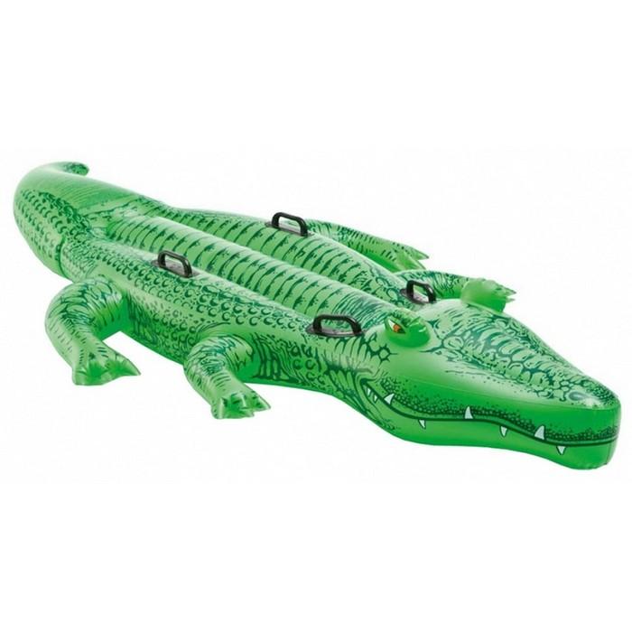 Купить Игрушка- наездник Intex Крокодил большой 58562,