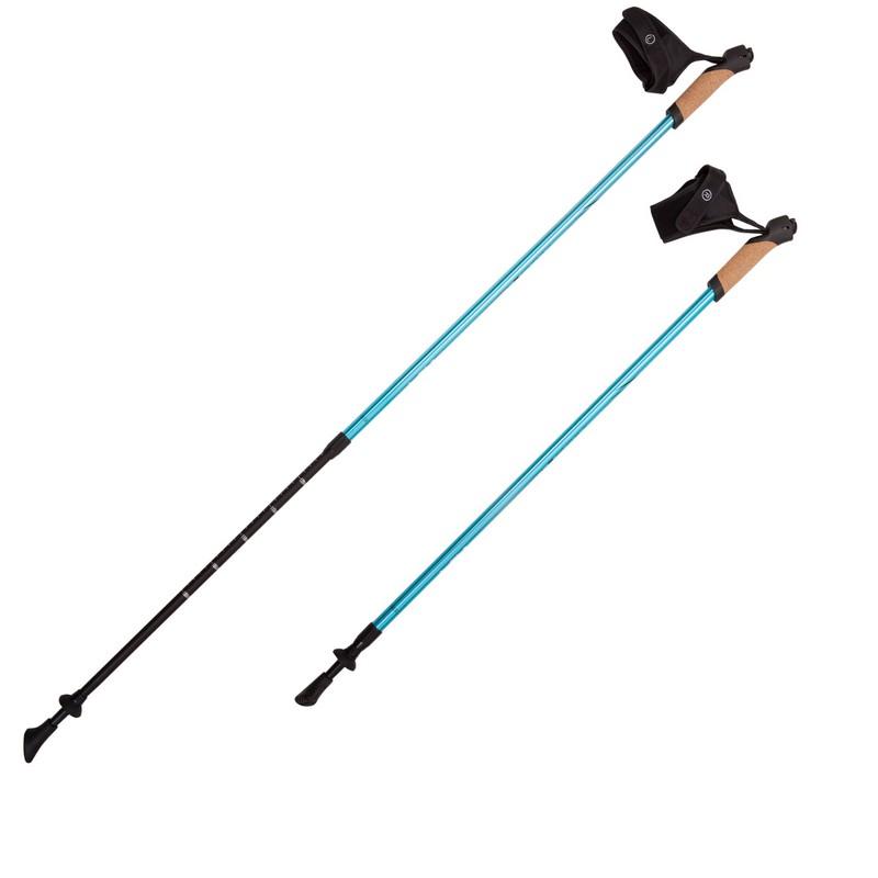 Палки для скандинавской ходьбы RGX 2-секционные 85-135 см NWS-14 голубой