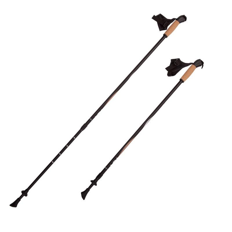 Купить Палки для скандинавской ходьбы RGX 2-секционные 85-135 см NWS-11 Черный,