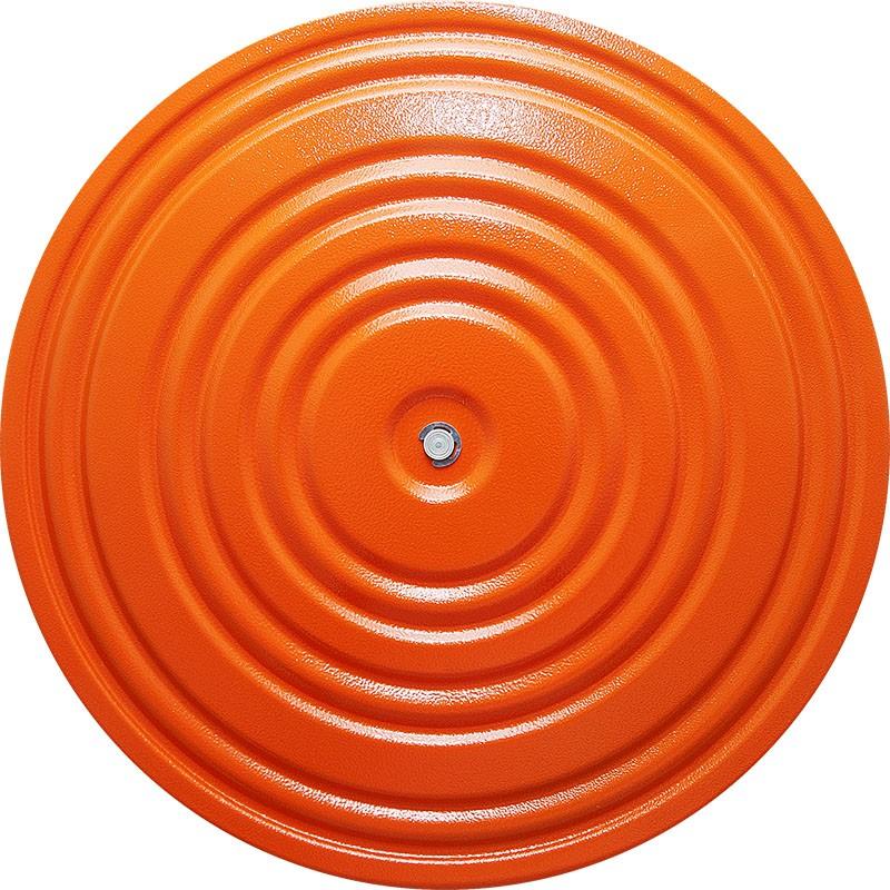Диск здоровья D=28 см MR-D-10 ,окрашенный, Оранжевый/фиолетовый