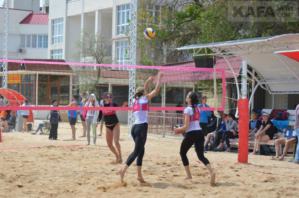 Сетка для пляжного волейбола ФСИ 6035-03, нить 3,5 мм (1х8,5м) черная