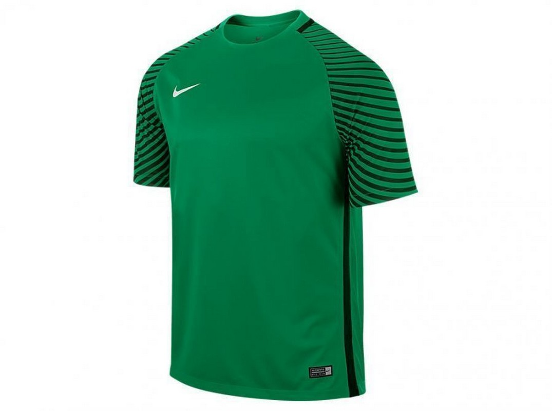 Футболка вратаря Nike Gardien Jsy Ss 725889-319 т.зел/черн