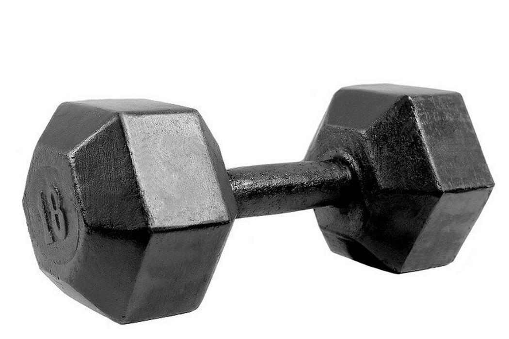 Купить Гантели гексагональные Iron King литые черная эмаль - 18 кг.,