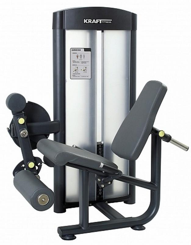 Разгибание ног Kraft Fitness KFLE регулируемая скамья kraft fitness kffiuby
