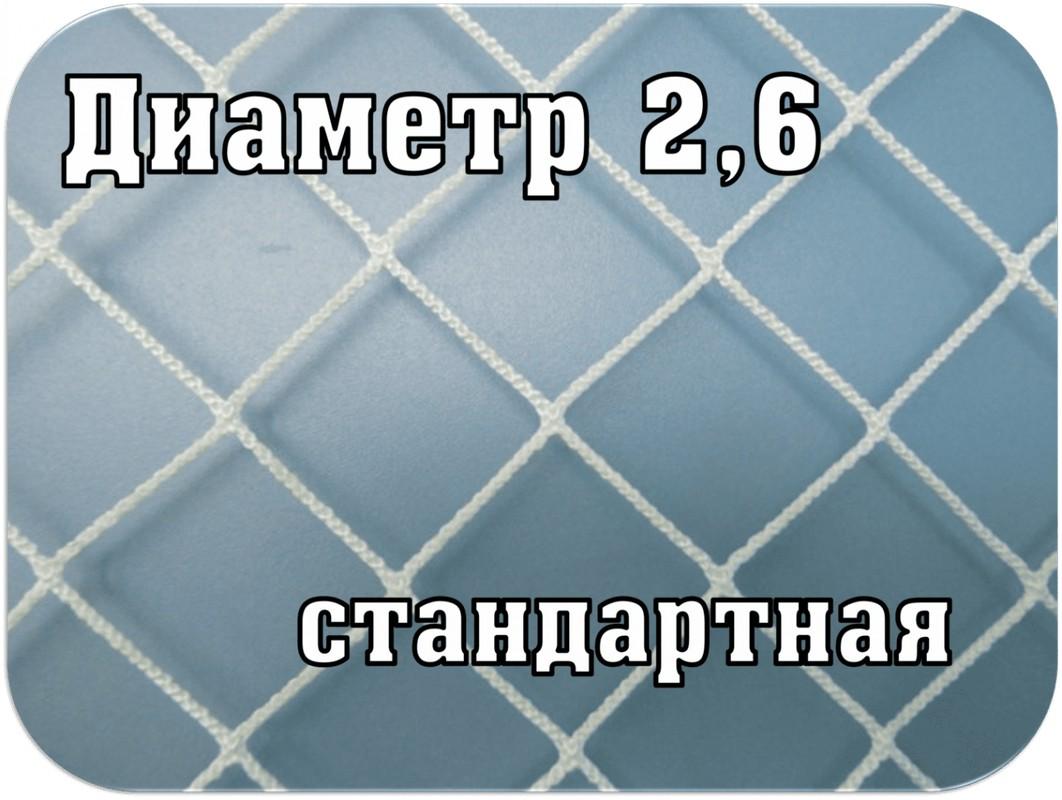 Купить Сетка для хоккея SG стандартная d=2,6мм SG-192,