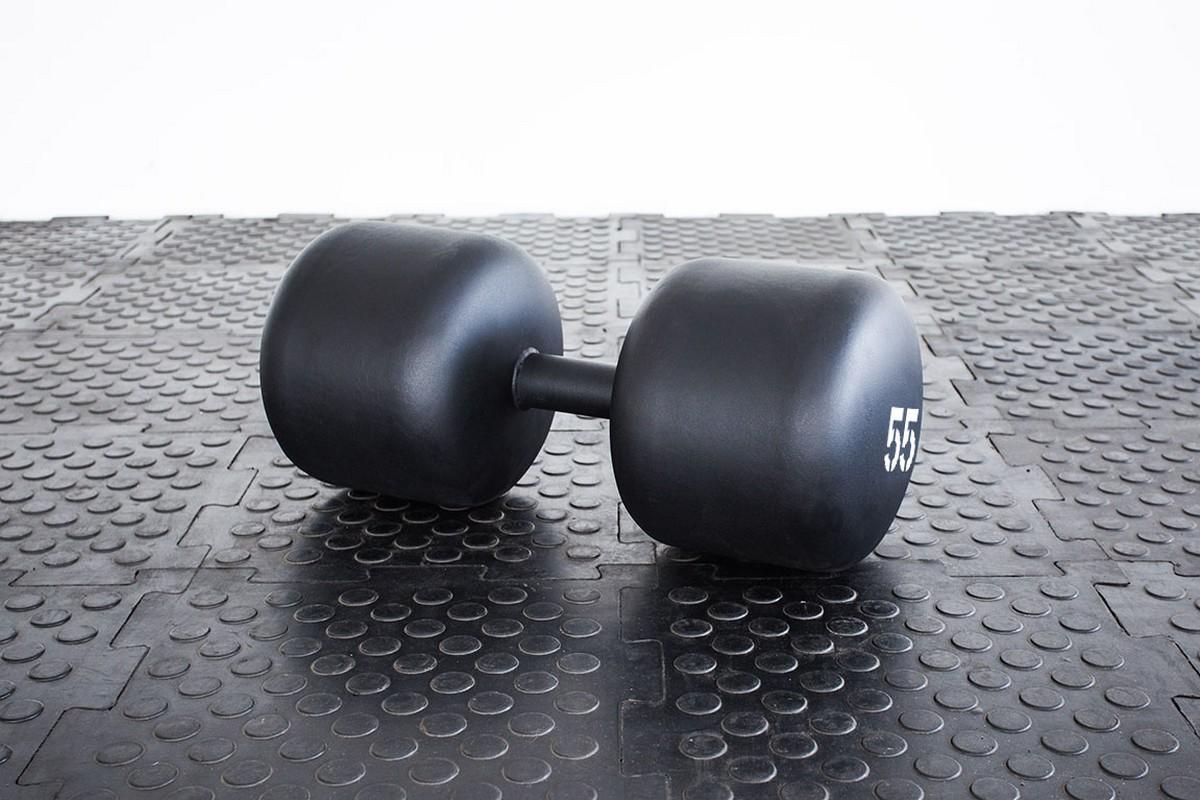 Купить Гантель Stecter Strong, 55 кг 2394,