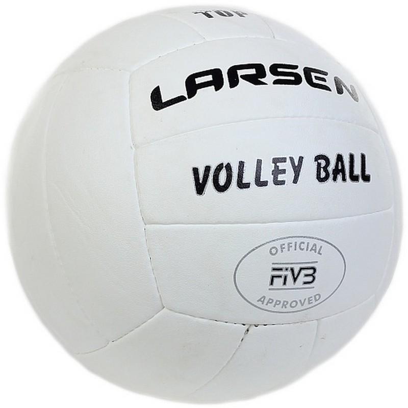 Купить Мяч волейбольный Larsen Top р.5,