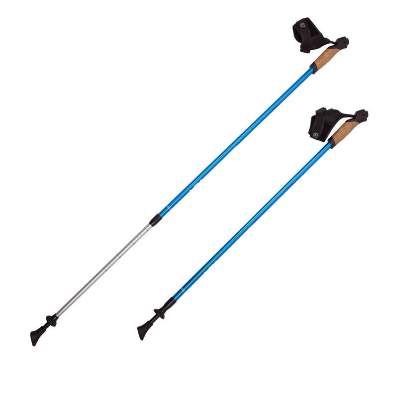 Палки для скандинавской ходьбы RGX 2-секционные 85-135 см NWS-12 Синий
